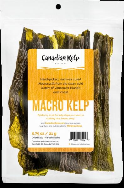 Macro-Kelp