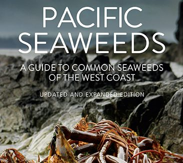 Updated and Expanded Edition Pacific Seaweeds